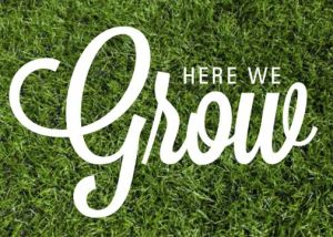 Here-we-grow